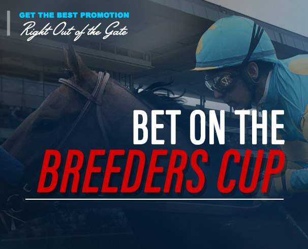 Bet on the Breeders' Cup